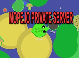 Photo of Mope.io Private Server