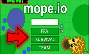mope.io team mode
