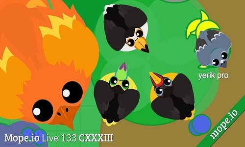 mope.io bird monster